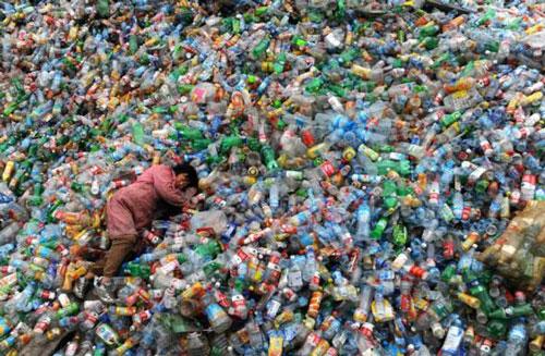Resultado de imagen para Depredación ambiental planetaria, acción directa del capitalismo salvaje